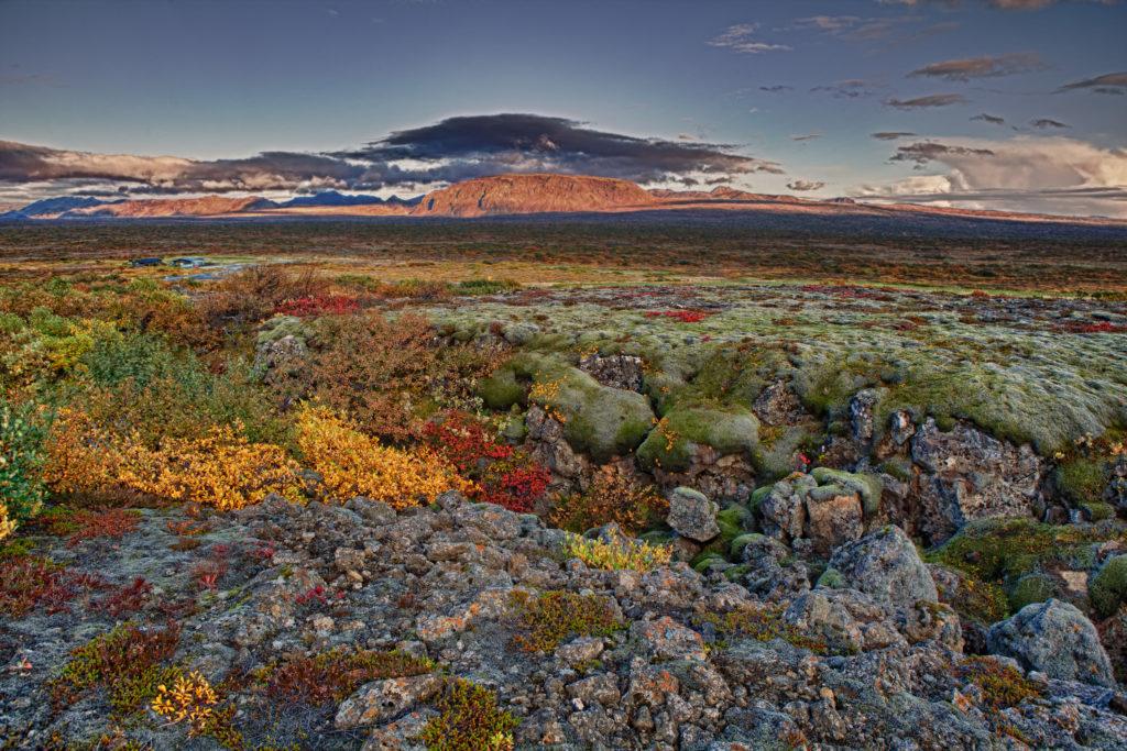 LifTe 北欧の暮らし アイスランド 風景