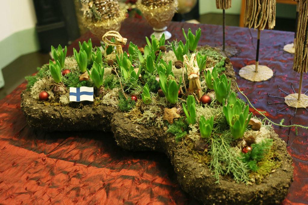 LifTe 北欧の暮らし ブラフ18番館 ヘンティネンクミ クリスマス ヒヤシンス 自生