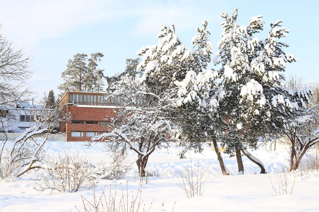LifTe 北欧の暮らし ユヴァスキュラ大学 アアルト フィンランド
