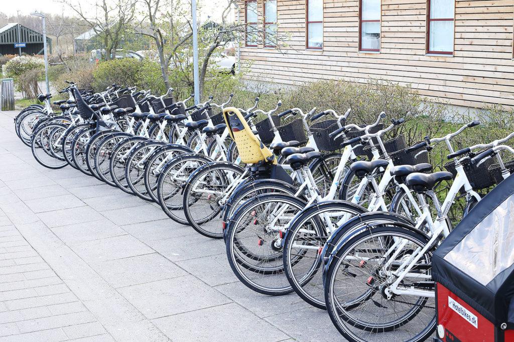 LifTe 北欧の暮らし ユースホステル コペンハーゲン ダンホステルコペンハーゲンアマー レンタサイクル Danhostel Copenhagen Amager