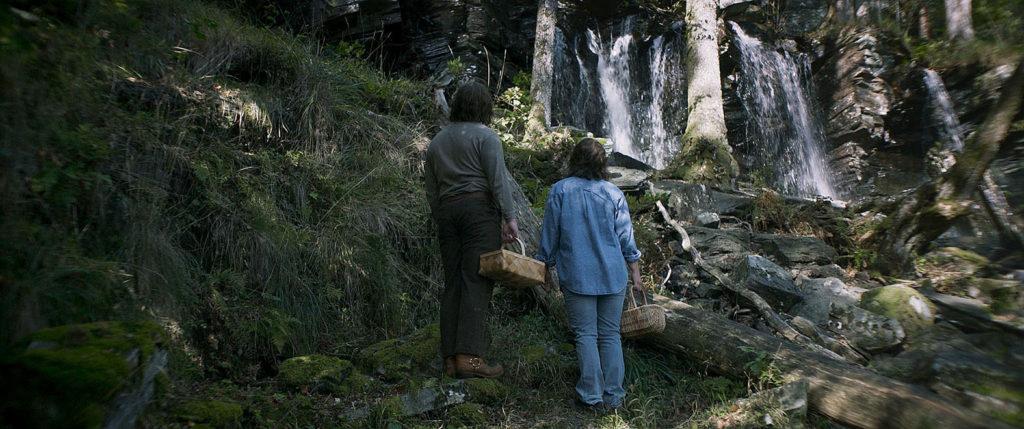 LifTe 北欧の暮らし ボーダー二つの世界 スウェーデン 森