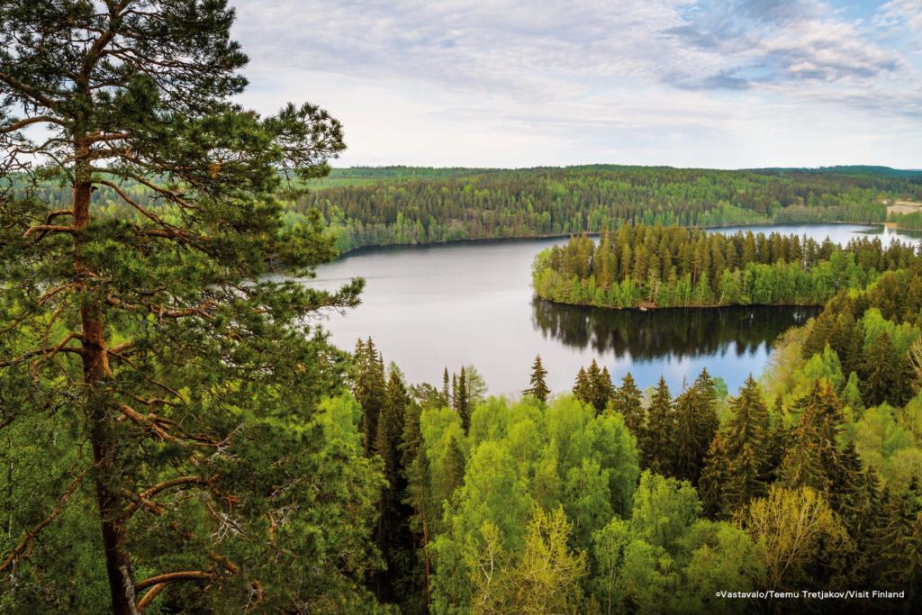 LifTe 北欧の暮らし フィンランド コスメ ピフィカ pihqa 森の恵み