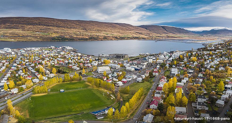 アイスランド スキル SKYR 国民食 スキムミルク アイスランド風景