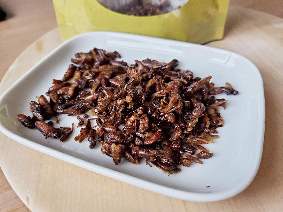LifTe 北欧の暮らし 昆虫食 コオロギ Makea Sirkka フィンランド