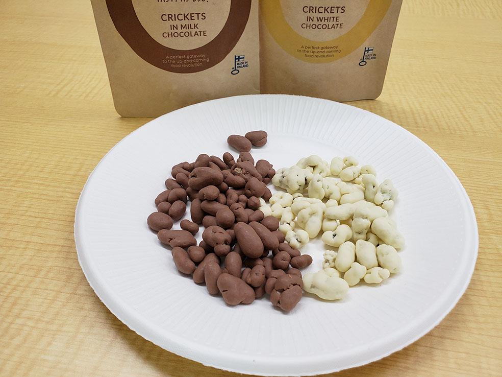 LifTe 北欧の暮らし LAAVU メッツァ ECショップ コオロギチョコレート ENTIS