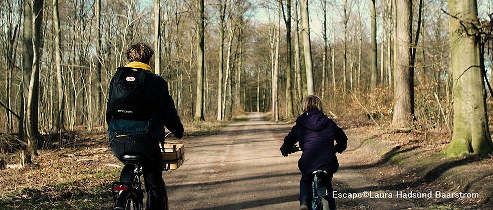 LifTe 北欧の暮らし 北欧短編映画祭 第13回みゆき野映画祭 斑尾高原 長野県 飯山市 デンマーク エスケープ